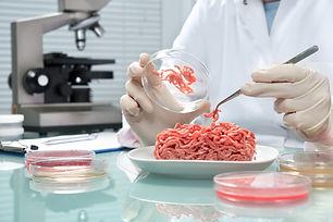 carne-in-vitro.jpg