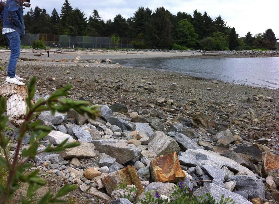 Ambleside Park, West Vancouver
