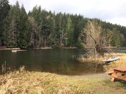 Cusheon Lake, Salt Spring 2