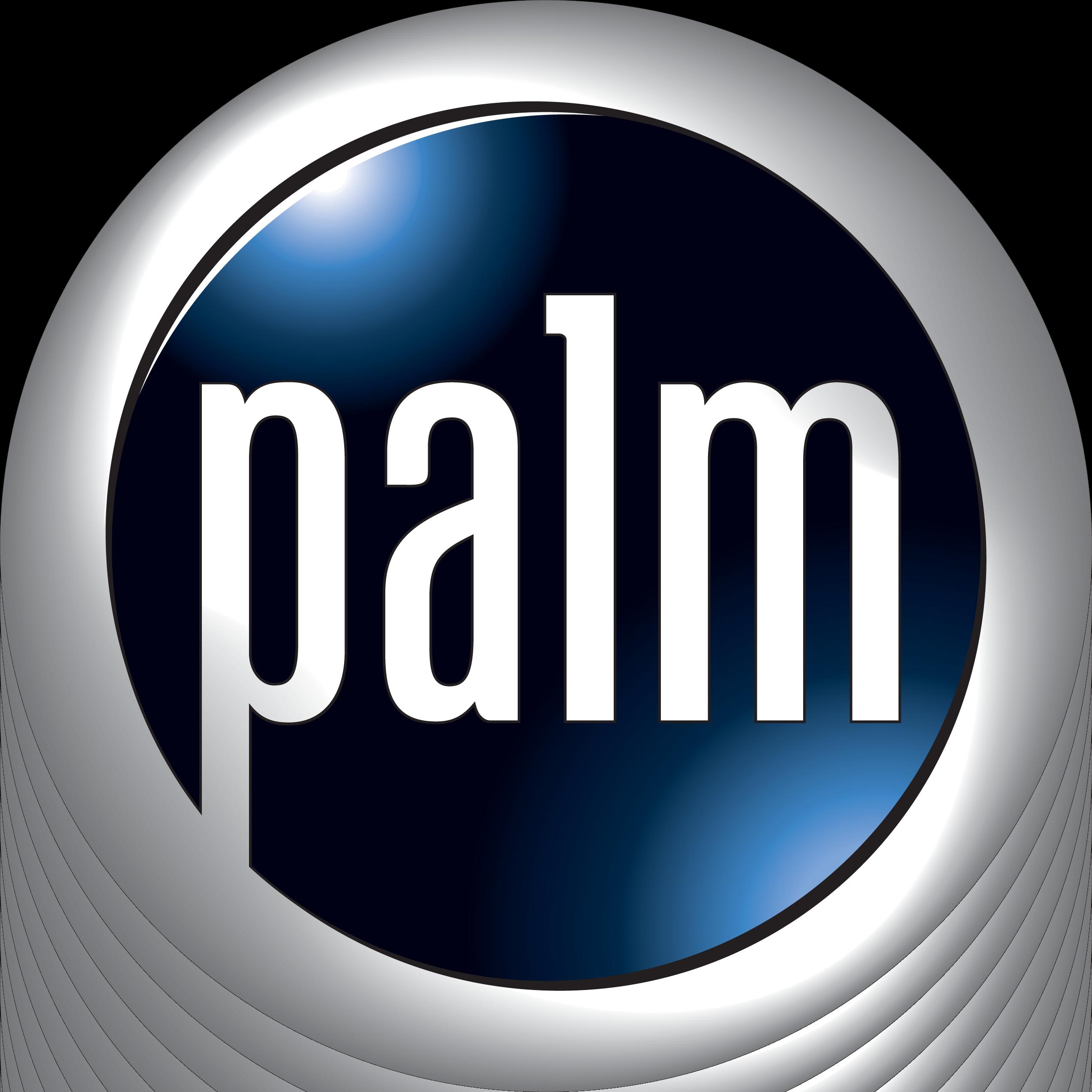 2 Palm Logo