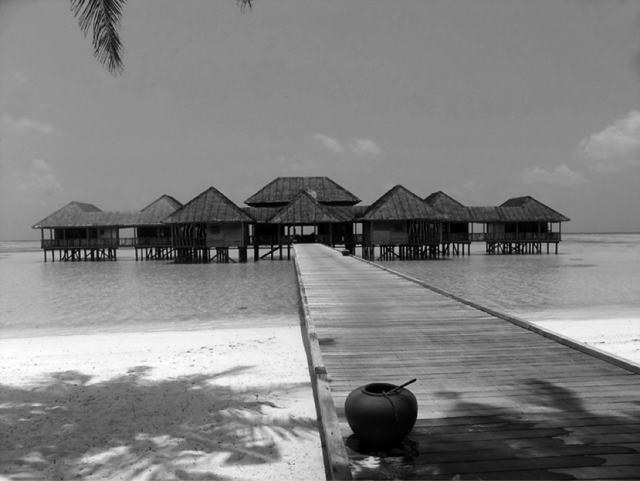 Resort and Hotel Marketing