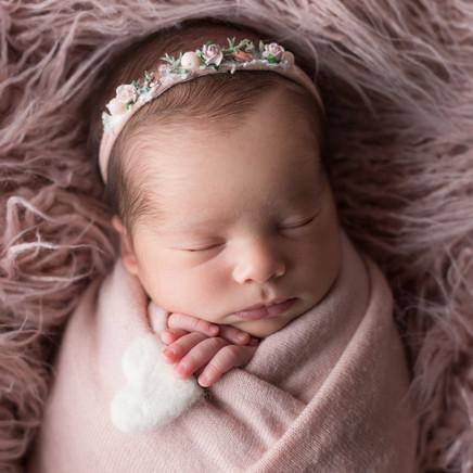 Newborn_Syara-7-8025.jpg