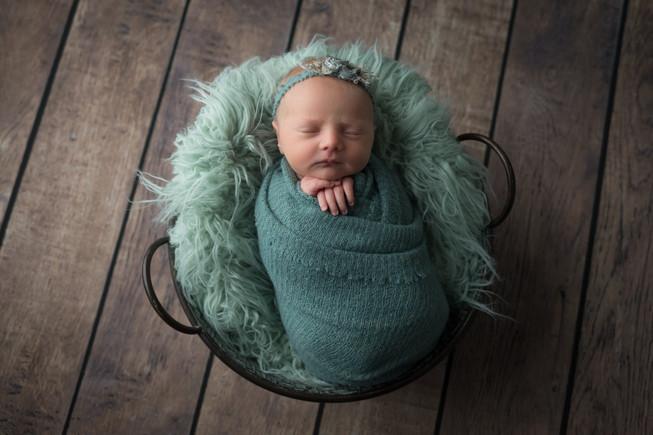 Newborn Philippa