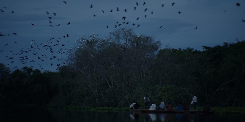 Cena do filme brasileiro Luz nos Trópicos (2020), de Paula Gaitán | Foto: Divulgação (Olhar de Cinema)