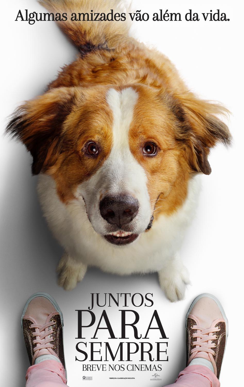 Cartaz do filme Juntos Para Sempre (2019) | Divulgação (Universal Pictures)