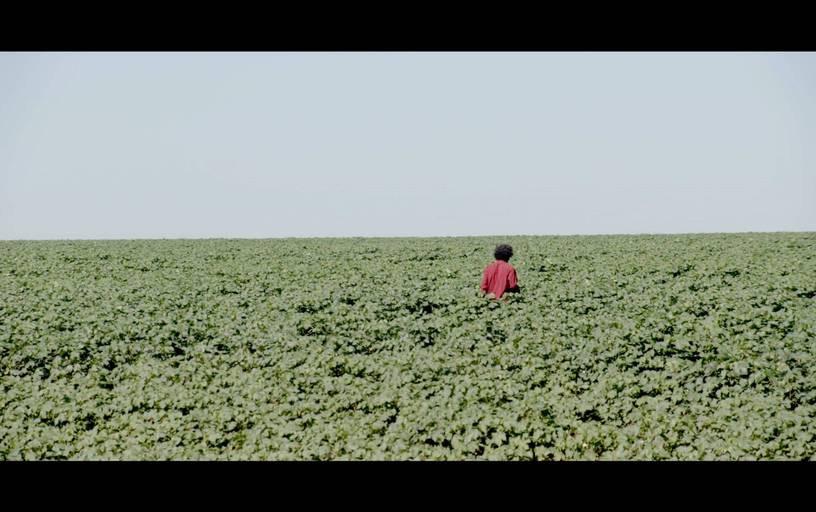 Cena do filme brasileiro Se Hace Camino al Andar (2020), média-metragem de Paula Gaitán | Foto: Divulgação (Créditos: Paula Gaitán)