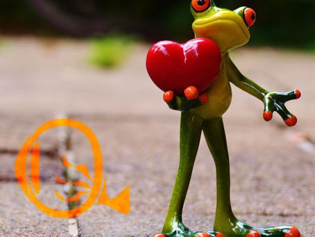 Dia dos Namorados | To Love Somebody, Everybody Needs Somebody to Love