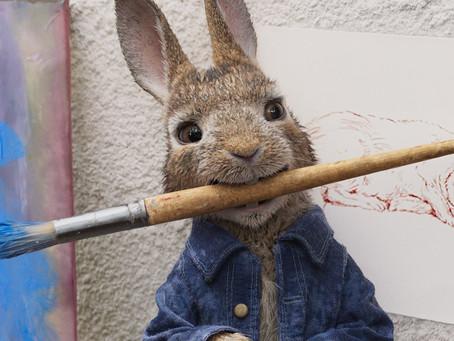 PEDRO COELHO | De menino a jovem coelho travesso