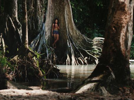 AMAZÔNIA GROOVE | Uma viagem sonora