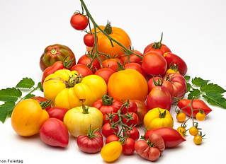 Help Settle the Great Tomato Debate