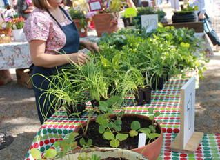 Thanks for Spring Plant Sale Support