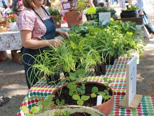 Birds n' Bees n' Plant Sale April 23