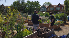 Community Garden Secures Funding for Bed Rebuild