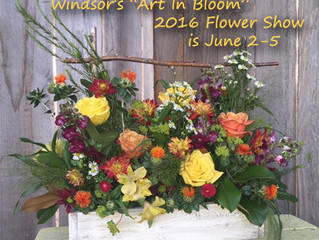 "Enter Windsor's 2016 ""Art in Bloom"" Flower Show"
