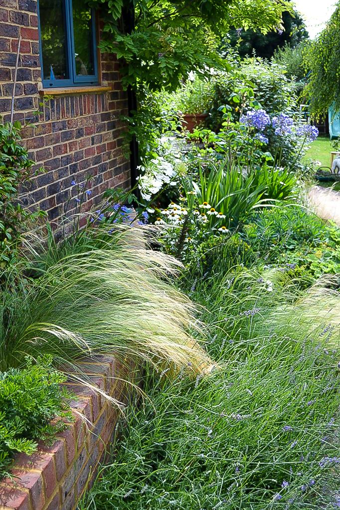 Surrey courtyard garden