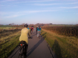The Cuckoo Trail