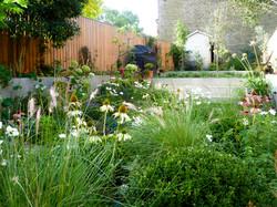 South West London garden