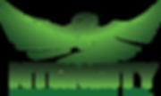 Ntensity logo