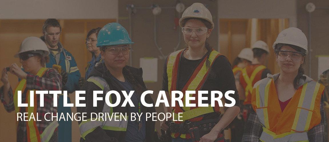 little_fox_career_edited.jpg