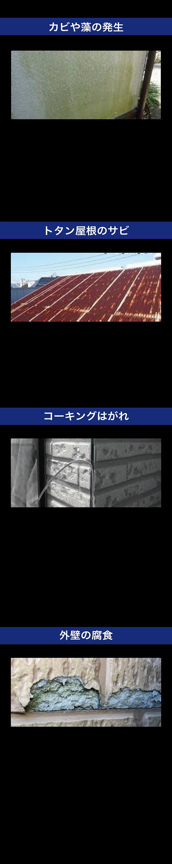 NKホームページ7-2.png