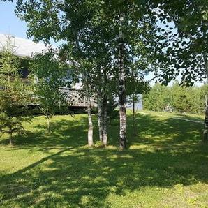 Cedar Lake Ranch Yard
