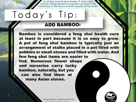 DIY Feng Shui - Add Bamboo