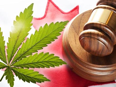 Marijuana Legislation - Are you ready?