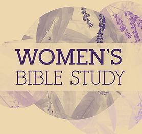 bible study crop.jpg