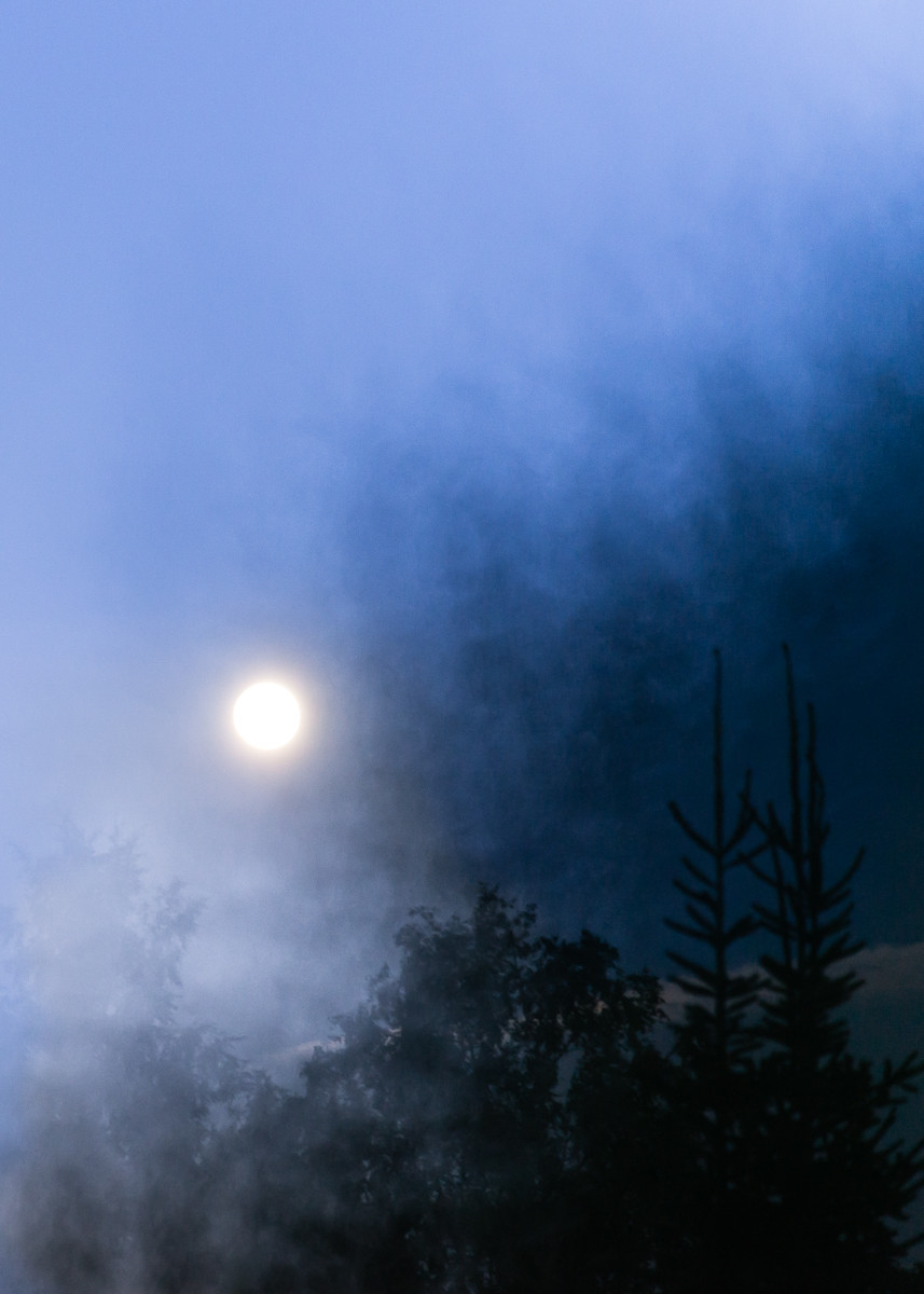 full moon over a misty forest