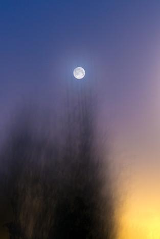 """Blue Moon - 04"""