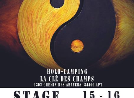 Stage - Les Fondements du Gi-gong Taoïste