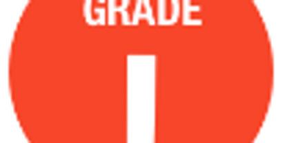 Grade 1 Individual Learning Profile