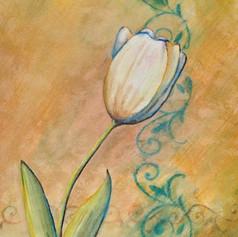 Tulip & Filigree