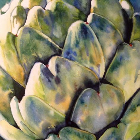 Harvest Artichoke