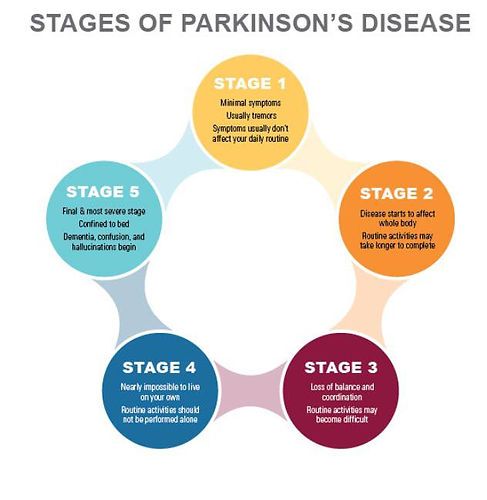 stages of parkinson's.jpg