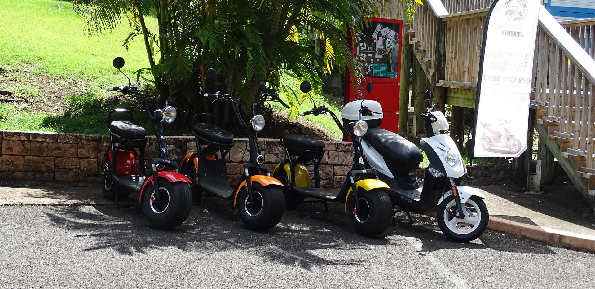 Location de scooters