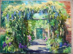 Wisteria Arch in Eastcote Gardens