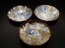 Cosmos Bowls
