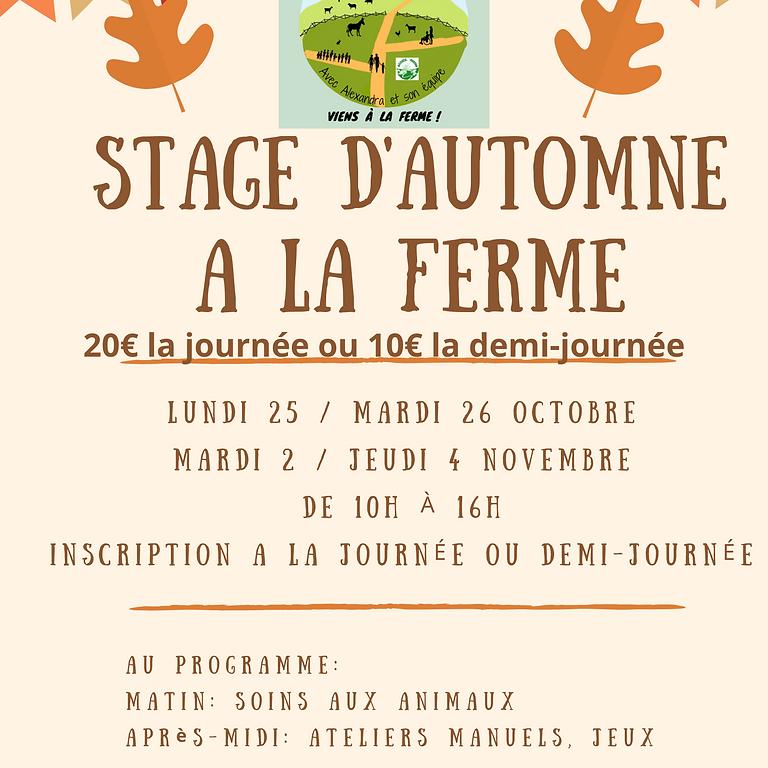Stage d'automne à la ferme
