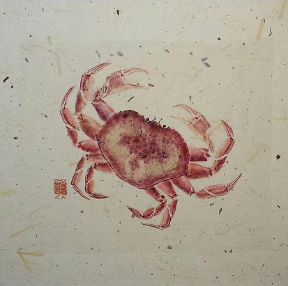 Dungeness Crab Crawl-1.jpg