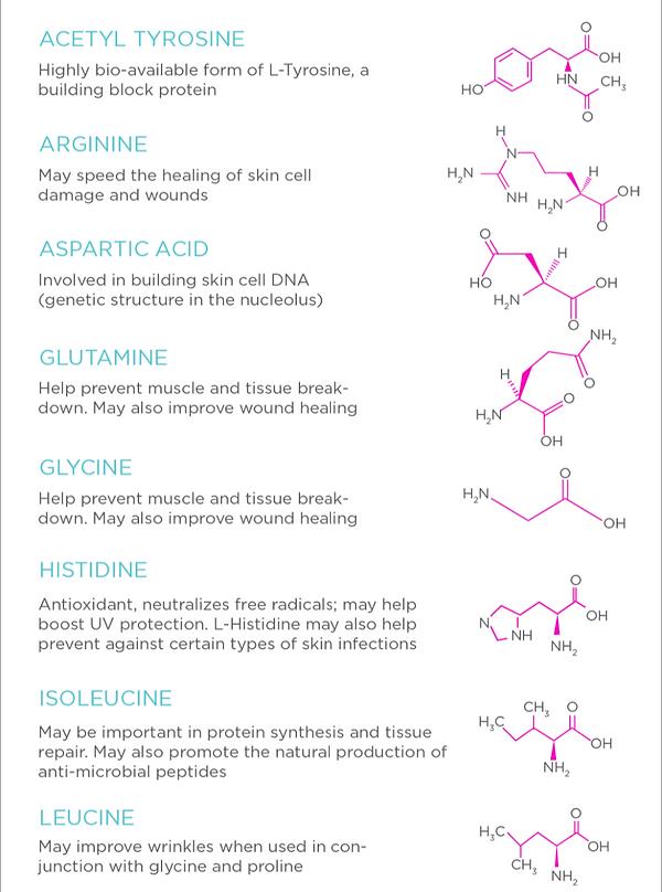 amino-acids-chart (1)_edited_edited_edit