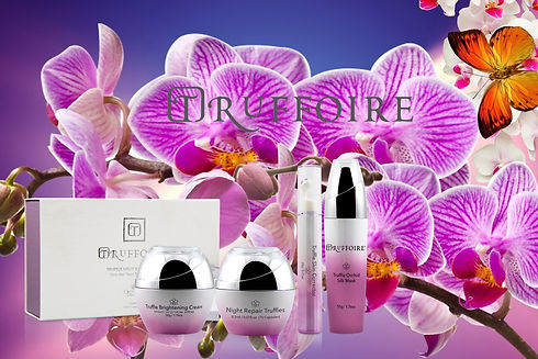 Collection Orchidia.jpg