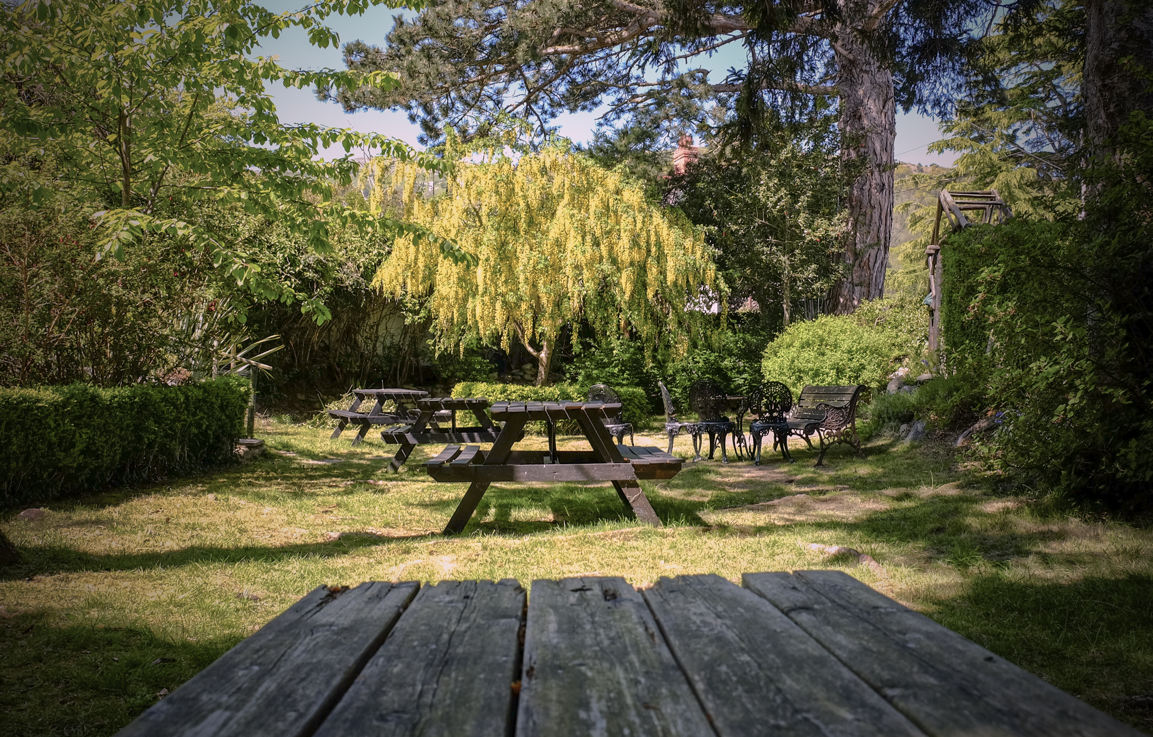 Ty Gwyn river garden