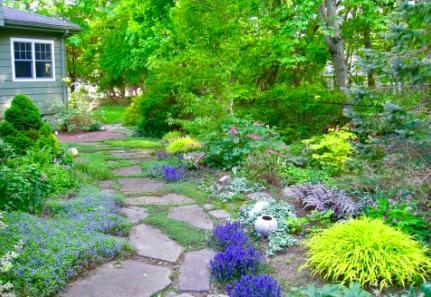 Sharon, MA Garden