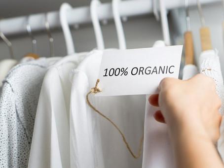 Focus sur l'éco-responsabilité