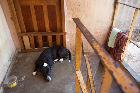 Favelas cariocas-54.jpg