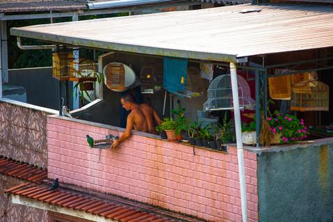 Favelas cariocas-71.jpg