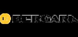 bergara-logo.png