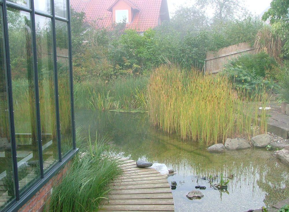 Купальный пруд частный участок