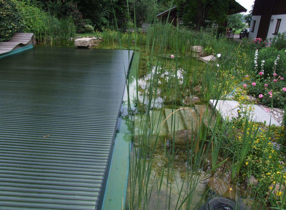 Купальный пруд BioNova